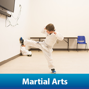 Children Sports Leagues: Karate